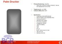 Palm Drucker Slide