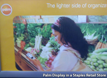 Palm Retail Display