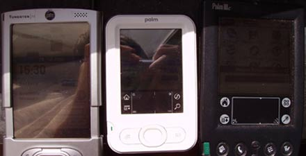 Palm Z22 outdoor